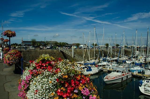 blommor vid hamnen